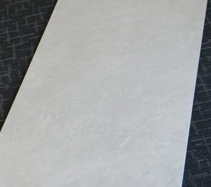 Premium Marble Light Grey Matt 1200x600