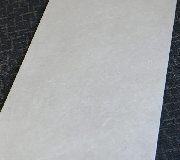 Premium Marble Light Grey Matt 1200x600