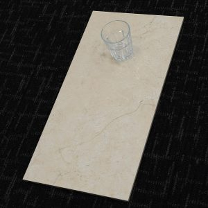 CZ6928_Earth Beige Gloss_300x600