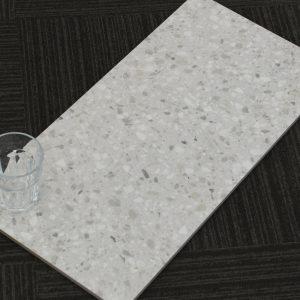 ZZ6070.Terrazo Grey Gloss.600x300