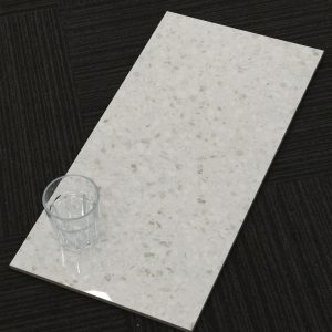 ZZ6078.Terrazo Light Gloss.600x300